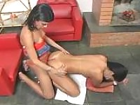 Smashing shemale greeting her girlfriend with doggystyle fucking on floor