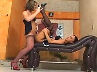 Sexy shemale and her girlfriend putting on tights before doggystyle fucking