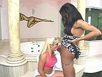 Lewd shemale and blondie multiply their pleasure while fucking in bathroom