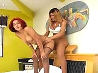 Redhead chick sucking shemales boner through pantyhose before frantic sex